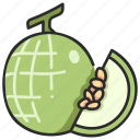 food, slice, cantaloupe, fruit, juicy, melon icon