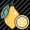 healthy, slice, lemon, fresh, fruit, juicy icon