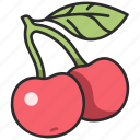 cherry, vegan, food, organic, fruit, berry, sour icon