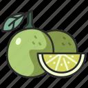 vegan, lime, food, fruit, juicy, citrus, sour icon