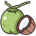 vegan, coconut, food, half, fruit, vegetarian icon
