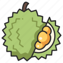 vegan, delicious, organic, fruit, durian, thorn icon