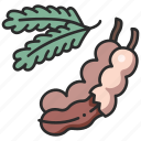 leaf, vegan, food, organic, fresh, fruit icon