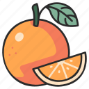 vegan, organic, orange, fruit, juicy, citrus icon