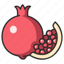 vegan, healthy, food, pomegranate, fruit, juicy icon