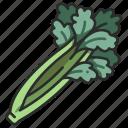 celery, vegetarian, vegetable, healthy, ingredient icon
