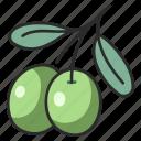 olive, healthy, organic, oil, natural, vegetarian