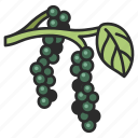 pepper, spice, healthy, food, organic, vegetable icon
