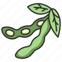 soy, soybean, vegetable, organic, bean, soybeans, agriculture icon