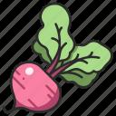 beet, root, raw, vegetable, vegetarian, ingredient icon