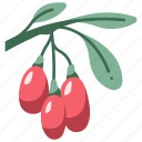 berry, healthy, goji, fruit, food, wolfberry icon