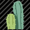 cacti, green, nature, cactus, plant icon