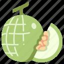 slice, juicy, fruit, food, melon, cantaloupe icon