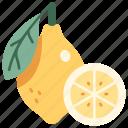 fresh, healthy, slice, juicy, fruit, lemon