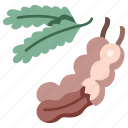 fresh, leaf, fruit, food, organic, vegan
