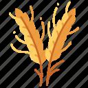 agriculture, plant, harvest, food, wheat, grain, crop