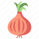 vegetable, ingredient, healthy, yellow, onion, organic icon