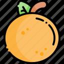 orange, tangerine, mandarin, fruit, healthy food, food