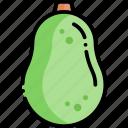 avocado, fruit, healthy food, food
