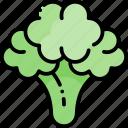 broccoli, vegetable, healthy food, food