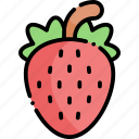 strawberry, fruit, healthy food, food