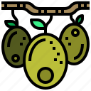 food, oil, olives, organic, vegetable icon