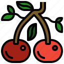 cherries, cherry, cooking, fruit, market icon