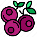 blueberries, dessert, food, fruit, healthy icon