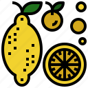 candy, food, fruit, lemon, sweet icon