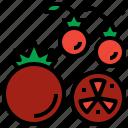 diet, food, fruit, tomato, vegetarian icon