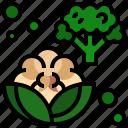 cauliflower, food, fruit, organic, vegan icon