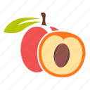 apricot, food, fruit, peach icon