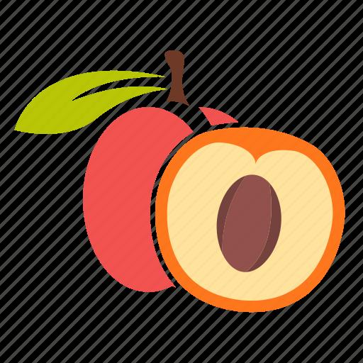 apricot, food, fruit, peach icon