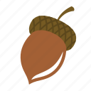 acorn, cobnut, hazelnut, nut, oak nut icon