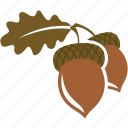 acorn, autumn, nut, oak icon