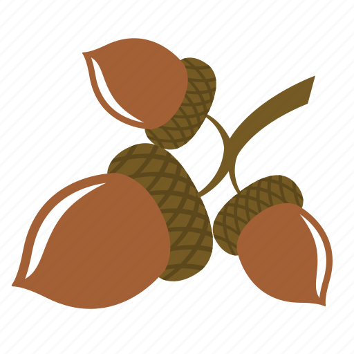 acorn, chestnut, nut, oak icon