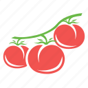 food, garden, healthy food, tomato icon