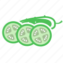 cucumber, day, megan, vegetable icon