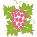 berry, grapes, wine icon