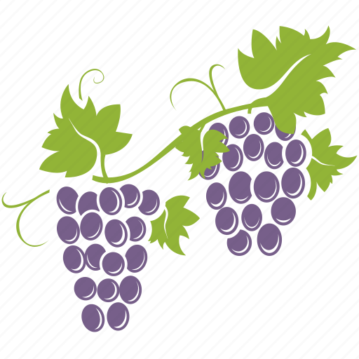 bunch, fruit, grapes, wine icon