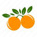 fruit combination, fruit mix, fruits, grapefruit icon