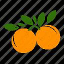 fruit combination, fruit mix, fruits, grapefruit