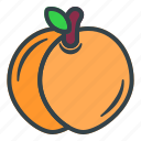 peach, fruit, vegetable, tropical