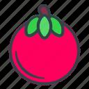 tomato, vegetable, healthy