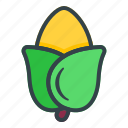 corn, vegetable, vegetarian, organic