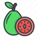 guava, rose apple, fruit