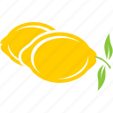 fruit, juice, lemon, lemonade icon