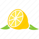 food, fruit, fruits, leaf, lemon icon