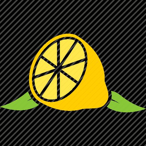 food, fruit, fruits, leaf, lemon icon
