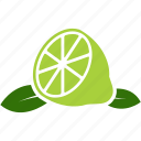 fruit, leaf, lemon, lime, orange icon